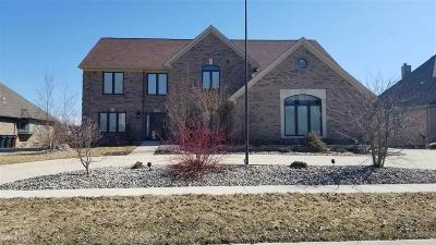 Shelby Twp Single Family Home For Sale: 14363 Knightsbridge