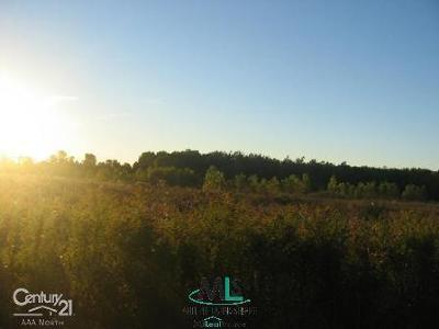 Armada, Armada Twp Residential Lots & Land For Sale: Capac Parent Parcel