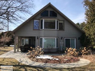Burtchville Single Family Home For Sale: 8750 Lakeshore