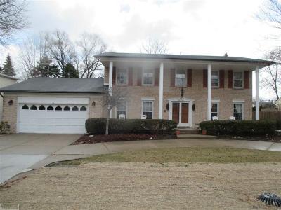 Clinton Township Single Family Home For Sale: 38434 Santa Anna