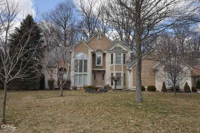 Shelby Twp Single Family Home For Sale: 53585 Oakview