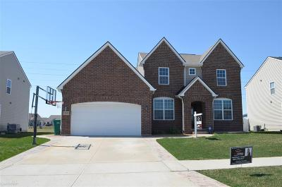 Macomb Single Family Home For Sale: 52695 Stafford