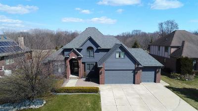 Clinton Township Single Family Home For Sale: 40540 Emerald