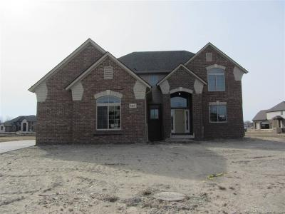 Shelby Twp Single Family Home For Sale: 54647 Deadwood