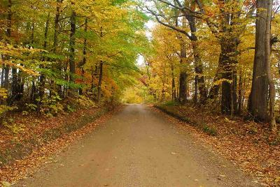 Oakland Residential Lots & Land For Sale: Hagerman Road