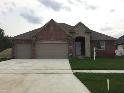 Macomb Twp Single Family Home For Sale: 21980 Rio Grande