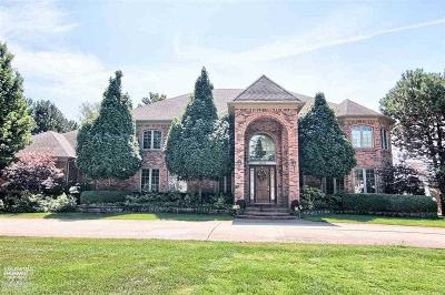 Single Family Home For Sale: 48874 Pointe Lakeview
