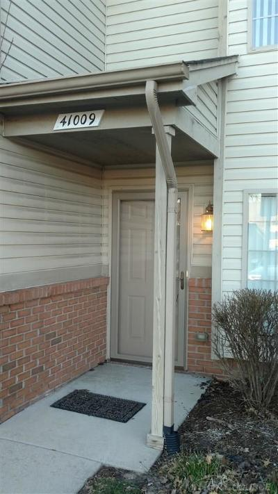Clinton Township Condo/Townhouse For Sale: 41009 Rose Lane