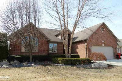 Macomb MI Single Family Home For Sale: $349,500