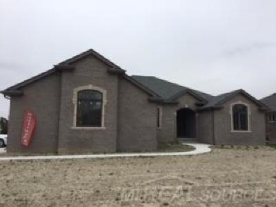 Chesterfield Single Family Home For Sale: 53253 Sams Lane