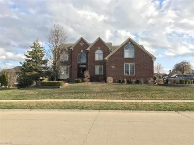 Shelby Twp Single Family Home For Sale: 2432 Hawthorne