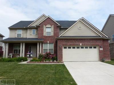 Clinton Township Single Family Home Pending: 43642 Grouse