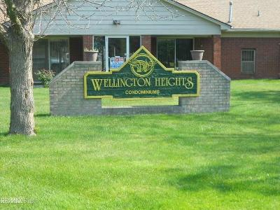 Clinton Township Condo/Townhouse For Sale: 38509 Wellington