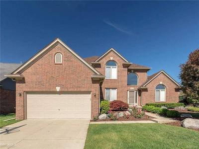 Macomb Twp Single Family Home For Sale: 48471 Stoneacre
