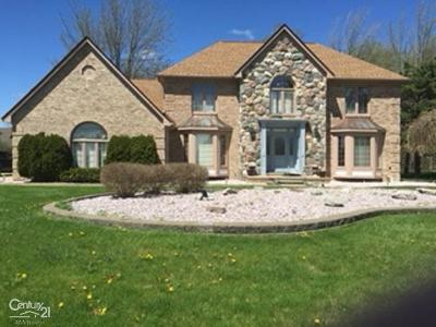 Sterling Heights Single Family Home For Sale: 4099 Nathan West