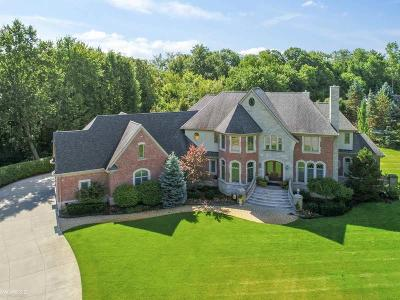 Romeo, Richmond Single Family Home For Sale: 11268 Dino Drive