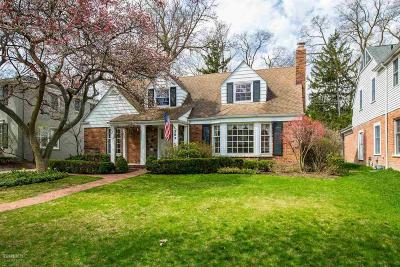Grosse Pointe Single Family Home For Sale: 383 Lincoln Road