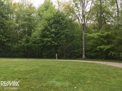 Clay Twp Residential Lots & Land For Sale: Lakepointe