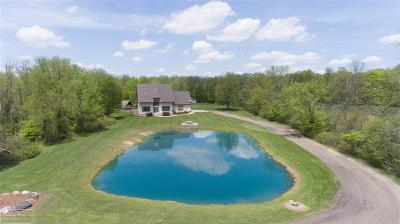 Riley Single Family Home For Sale: 13310 Belle River