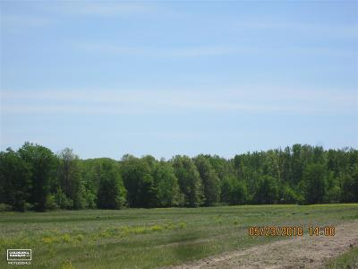 Residential Lots & Land For Sale: Big Hand Parcel A