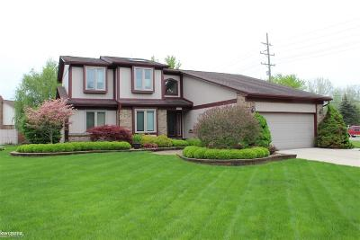 Clinton Township Single Family Home For Sale: 20674 Lupo Dr