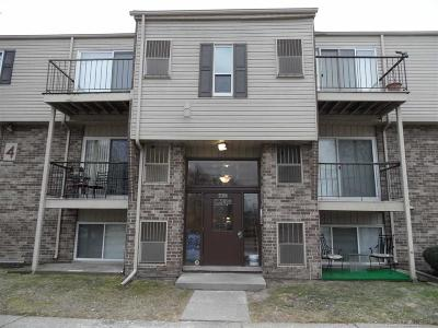 Macomb Condo/Townhouse For Sale: 17124 Clinton River