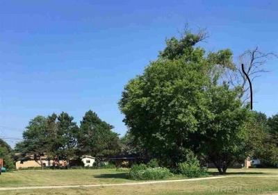 Shelby Twp Residential Lots & Land For Sale: Dequindre