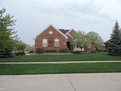 Clinton Township Single Family Home For Sale: 43529 Loon Lane
