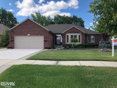 Clinton Township Single Family Home For Sale: 17510 Eider