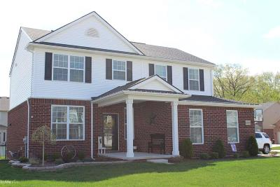 Macomb Single Family Home For Sale: 48046 Norwood