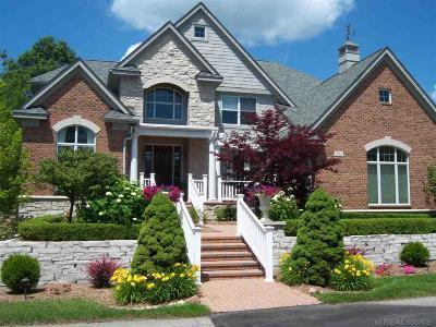 Lake Orion Single Family Home For Sale: 96 Greenan Ln