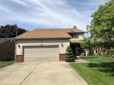 Harrison Twp Single Family Home For Sale: 37867 Lakeville