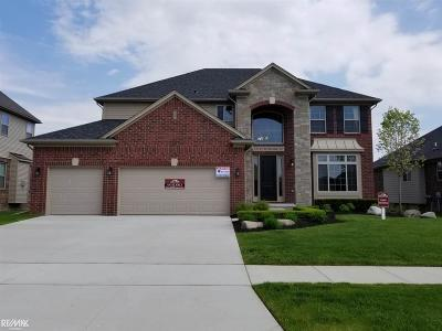 Macomb Single Family Home For Sale: 55124 Wolverine Dr