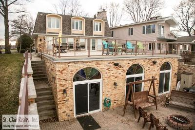 Saint Clair  Single Family Home For Sale: 4129 S River