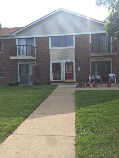 Sterling Heights Condo/Townhouse For Sale: 43244 Mound Rd