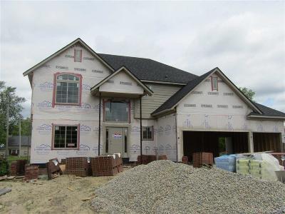 Macomb Single Family Home For Sale: 21821 Rio Grande