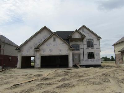 Macomb Single Family Home For Sale: 21932 Rio Grande