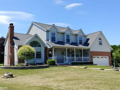 Lenox Single Family Home For Sale: 66069 Place Rd