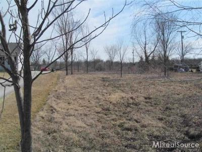Residential Lots & Land For Sale: 29 Mile Rd.