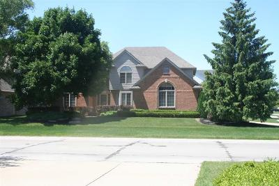 Macomb Twp Single Family Home For Sale: 45179 Riverwoods Dr