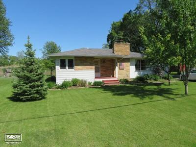 Algonac  Single Family Home For Sale: 9465 Maynard