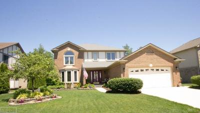 Macomb Single Family Home For Sale: 15769 Howard
