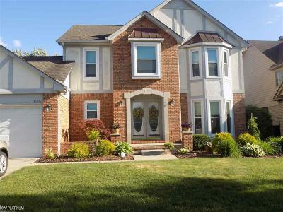 Clinton Township Single Family Home For Sale: 43516 Welland