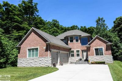 Macomb MI Single Family Home For Sale: $439,900