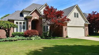 Harrison Twp Single Family Home For Sale: 38977 Parkway Circle