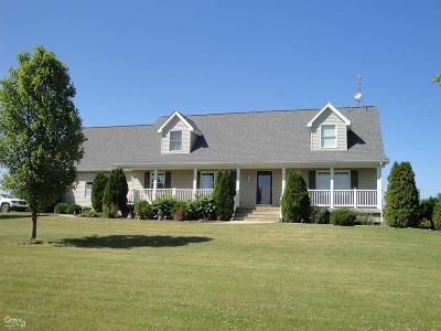 Lapeer Single Family Home For Sale: 3125 Barnes Rd.