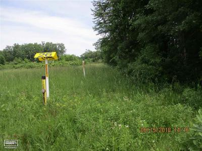Macomb MI Residential Lots & Land For Sale: $80,000
