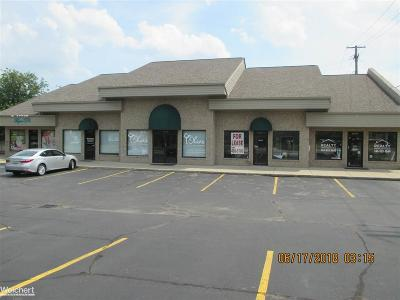 Shelby Twp Commercial Lease For Lease: 8072 21 Mile