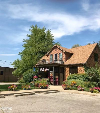 Harrison Twp Single Family Home For Sale: 25585 Crocker