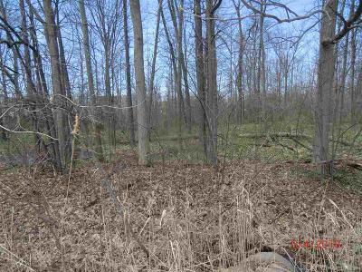 "Chesterfield Twp Residential Lots & Land For Sale: Brandenberg Dr. Parcel ""c"""